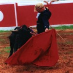 lefflerbullfight