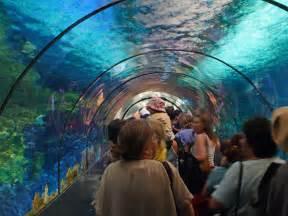 encountertunnel