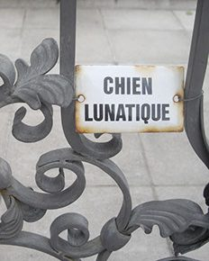 chienlunatiquecover