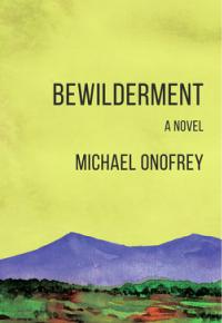 bewildermentcover