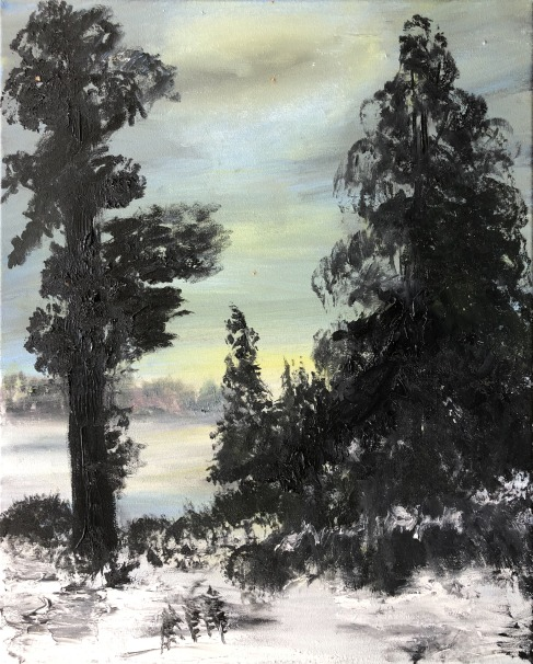 Evergreen trees in the foreground in the snow, possibly a frozen lake in the background and more trees on the other side.